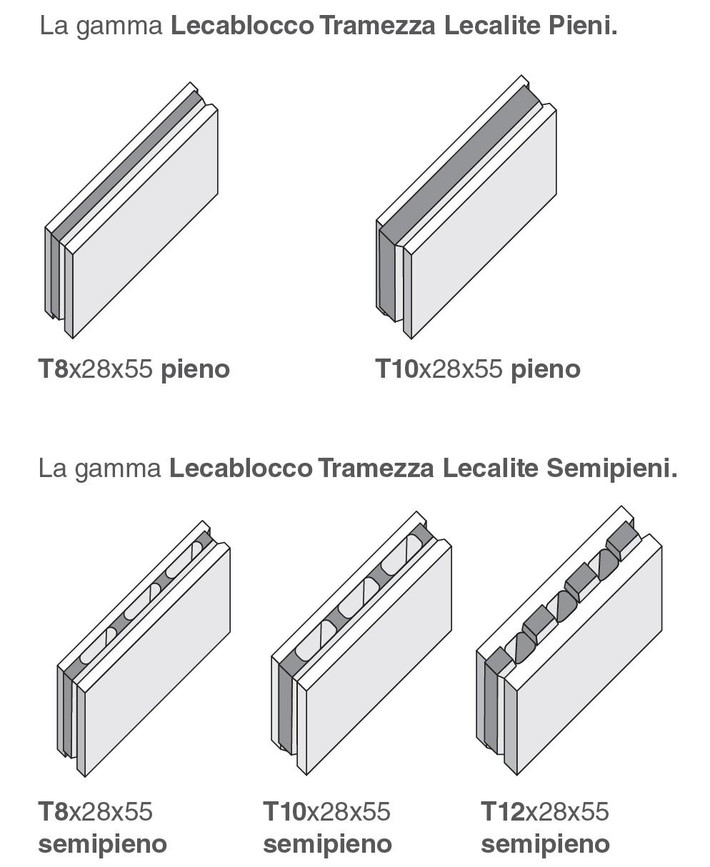 elementi-famiglia-lecalite